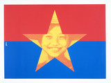 The Viet Cong flag