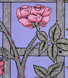Climbing Rose wallpaper, by William Morris