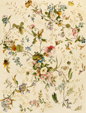 Design for Chintz, by William Kilburn