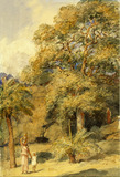 Tamarind and Wild Date Trees Beach Candy, by William Carpenter