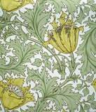 Anemone wallpaper, by William Morris