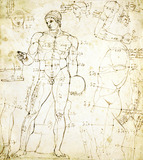 Drawing of the anatomy, with annotations, by John Deare