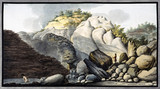 Hot spring in the Solfaterra, near Naples, Kingdom of Naples, c 1760.