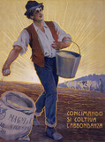 'By Fertilizing the Soil, One Cultivates Plenty', poster, Italian, c 1900.