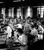 Mullard female employees asemble cathode ray guns at Simonstone, 1956.