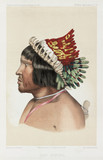 Bororo chief, South America, c 1843-1847.