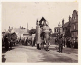 Parade of elephants, c 1905.