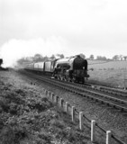 'Flying Scotsman' train, pulled by 'Osprey' at Ganwick Curve, c 1957.