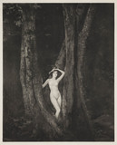 'Nude in Wood', c 1925.