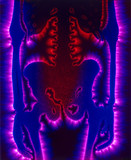 Kirlian photograph of a human skeleton.