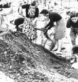Women filling sandbags, 13 September 1939.