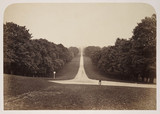 'The Long Walk, Windsor', c 1860.