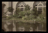 """'San Diego Exposition, Botanical Building', c 1915."""