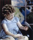 Girl with budgerigar.
