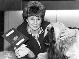 Afghan hound that flies on British Airways, June 1987.