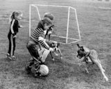 Children and dogs playing football
