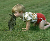 Boy with baby wallaby