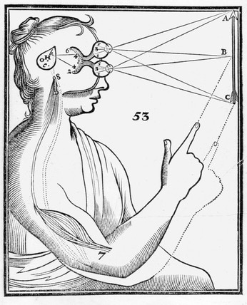 'Theory of Perception', anatomical drawing, 1686.