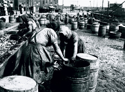 Female fish-gutters at work, Whitby quayside, North Yorkshire, c 1900s.