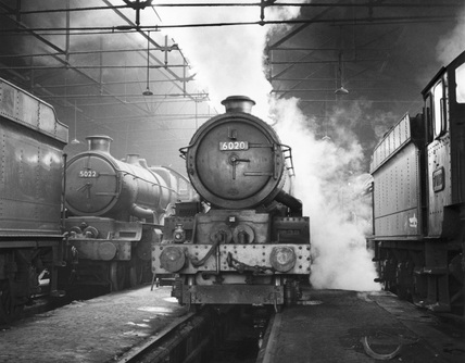 Steam locomotives in the Stafford Road shed, Wolverhampton, 8 October 1961.