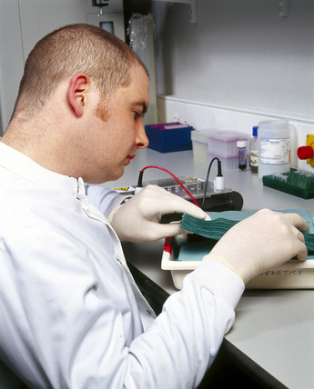 Scientist setting up a 'Southern blot', 2000.