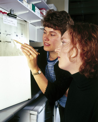 Molecular geneticists studying an autoradiograph.