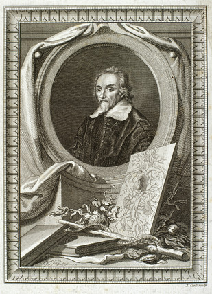 William Harvey MD FRCP, English physician, early 17th century.