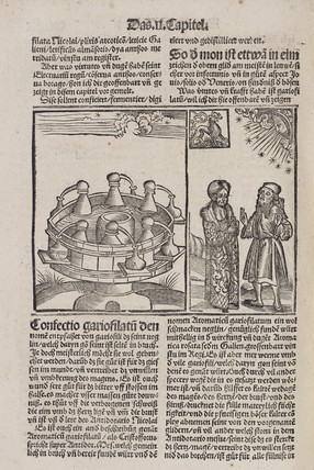 Alchemical water bath and astrologers, 1512.
