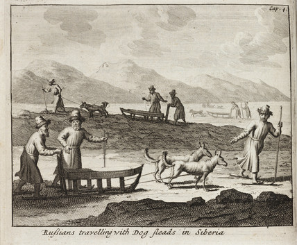 'Rusians travelling with Dog sleads [sic] in Siberia', c 1700.