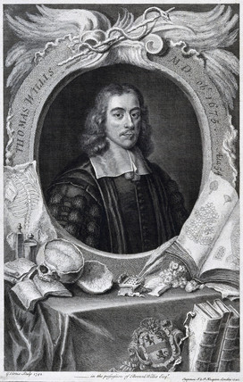 Thomas Willis, British physician, c 1660.