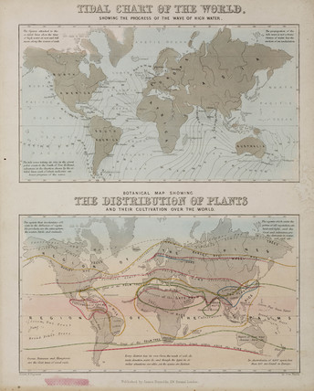 A tidal chart and a map of the distribution of plants acros the world, c 1850.