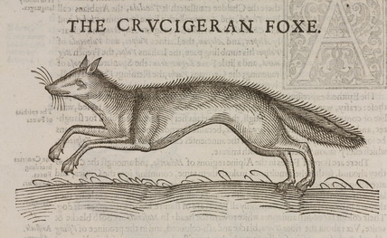 'The Crucigeran Foxe', 1607.