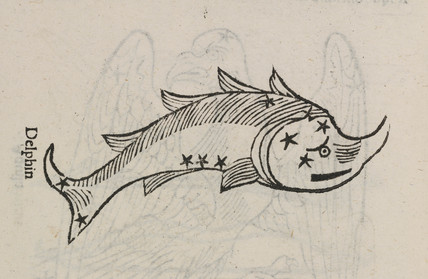The constellation of  Delphin, 1488.