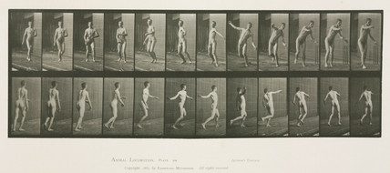 Time-lapse photographs of a man throwing a cricket ball, 1872-1885.