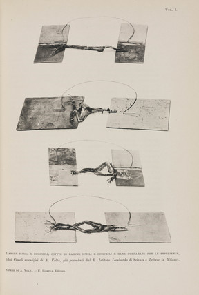 Apparatus for demonstrating 'animal electricity', early 19th century.