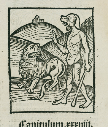 Lion and the mythical 'cephos', 1497.