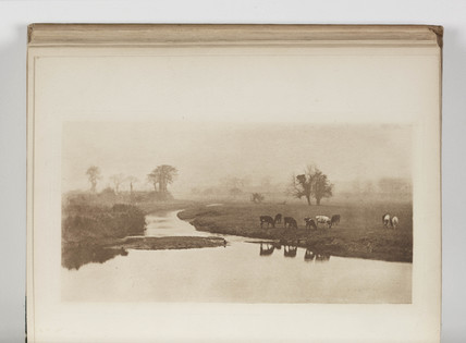 'Sheep on the Marshes', 1893.