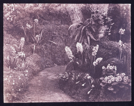 Spring flowers beside a pathway, c 1850.