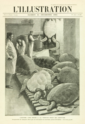 Turtle soup, London, 1901.