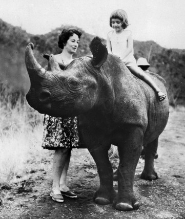 Child riding a rhino, January 1981.