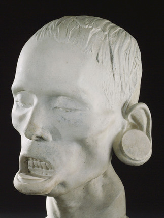 Phrenological head of a South American Indian, 1826.