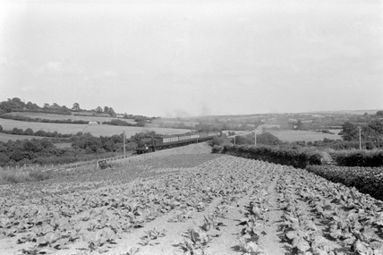 West Ford, 3 July 1953