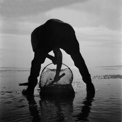 Collecting cockles Thames Estuary - 1962