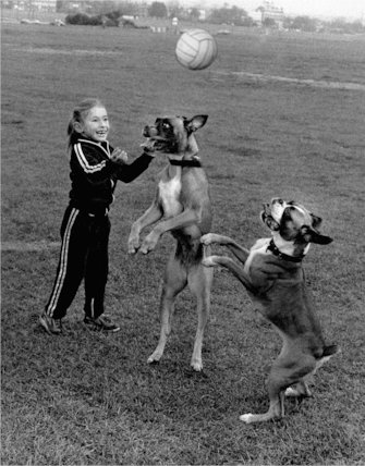 Girl playing football with dogs