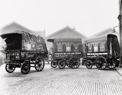 Parcel collecting vans at Camden, 1920.
