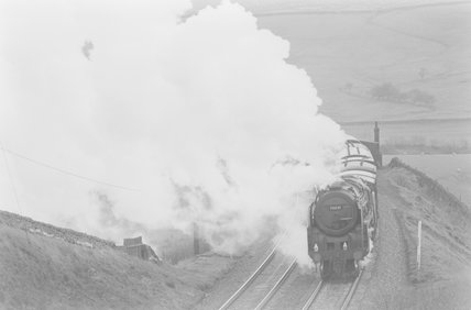 A steam locomotive hauling a goods train,A1969.70/Box 5/Neg 1255/29