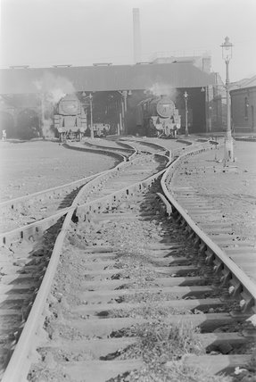 Photographic negative taken by John Clarke of steam locomotives outside a shed. ,A1969.70/Box 5/Neg 1272/6