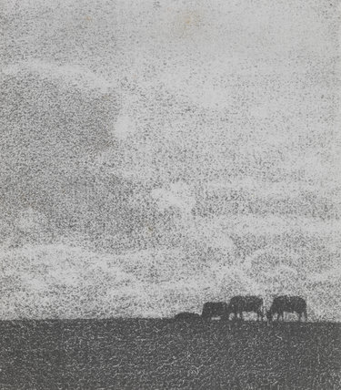 Landscape with cows