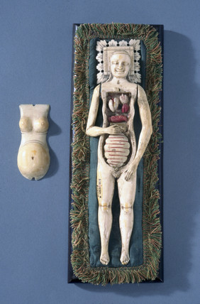 Anatomical figure of a pregnant woman, posibly Italian, 1600-1800.