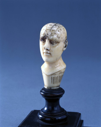Ivory phrenological head with wooden circular pedestal, 1850-1914.
